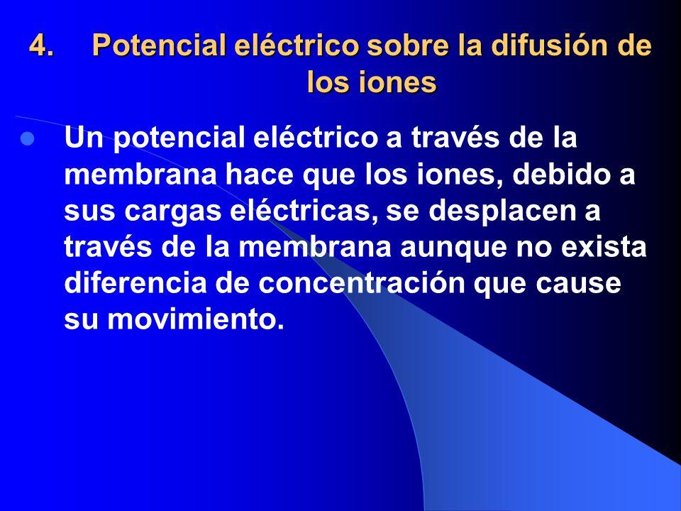 4.Potencial eléctrico sobre la difusión de los iones Un potencial eléctrico a través de la membrana hace que los iones, debido a sus cargas eléctricas