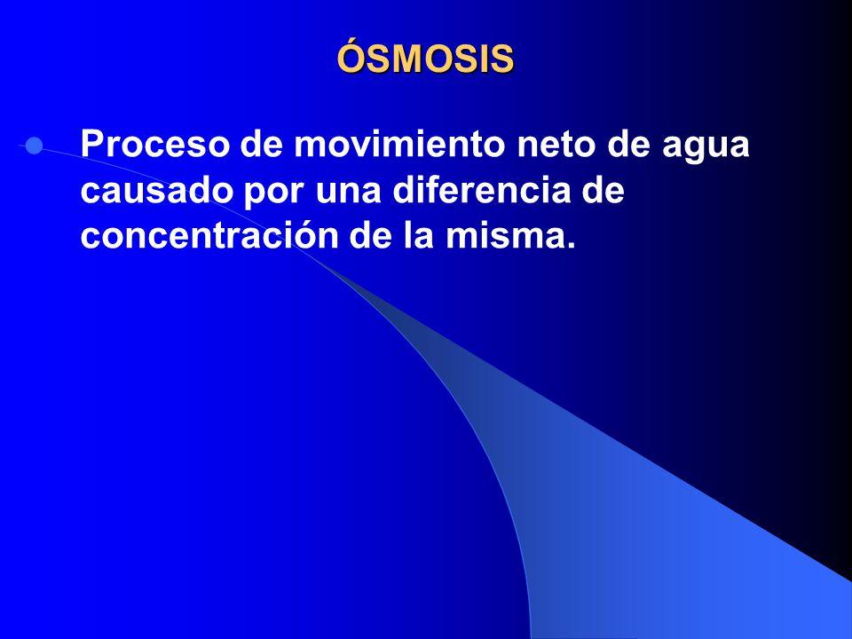 ÓSMOSIS Proceso de movimiento neto de agua causado por una diferencia de concentración de la misma.