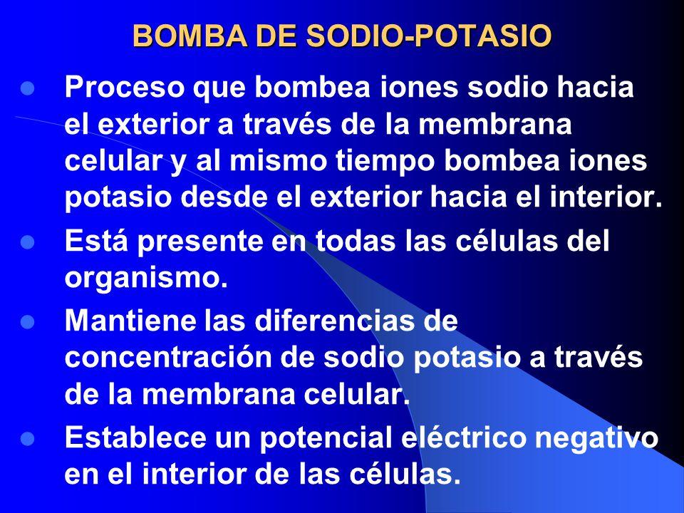 BOMBA DE SODIO-POTASIO Proceso que bombea iones sodio hacia el exterior a través de la membrana celular y al mismo tiempo bombea iones potasio desde e