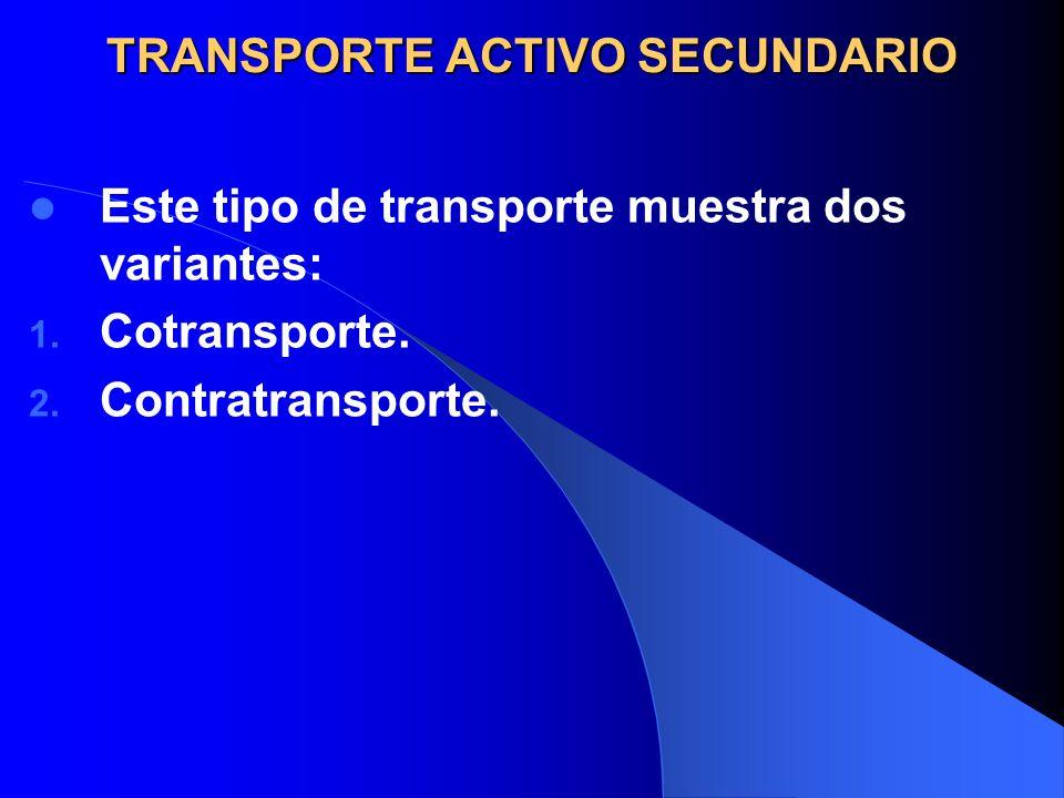 TRANSPORTE ACTIVO SECUNDARIO Este tipo de transporte muestra dos variantes: 1. Cotransporte. 2. Contratransporte.