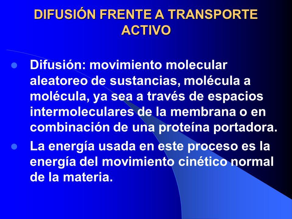 DIFUSIÓN FRENTE A TRANSPORTE ACTIVO Difusión: movimiento molecular aleatoreo de sustancias, molécula a molécula, ya sea a través de espacios intermole