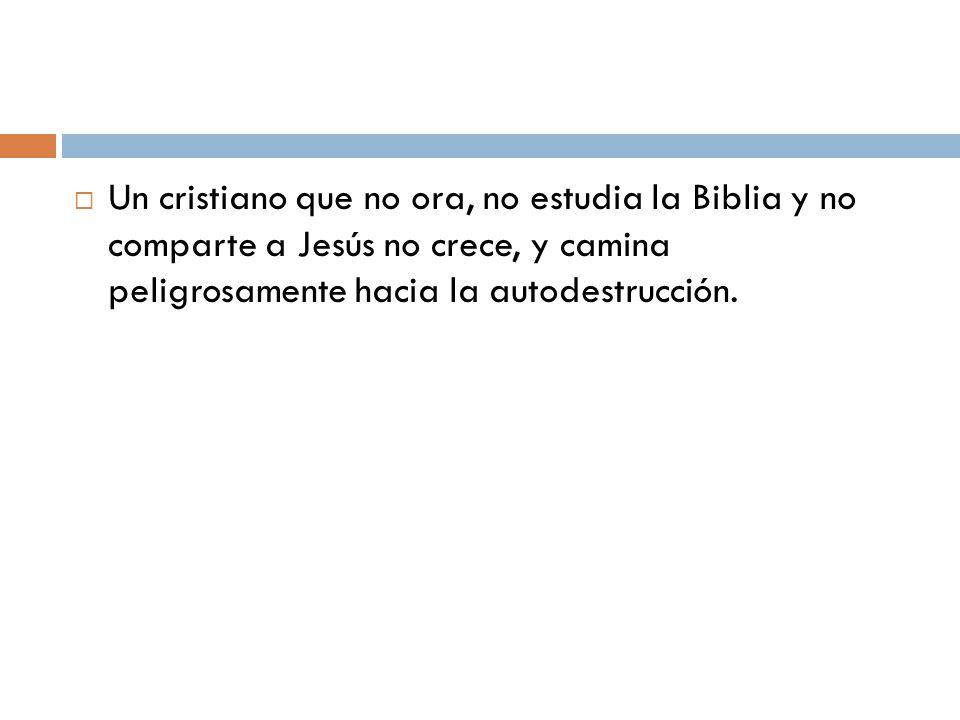 Un cristiano que no ora, no estudia la Biblia y no comparte a Jesús no crece, y camina peligrosamente hacia la autodestrucción.