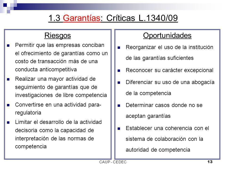 CAUP - CEDEC13 1.3 Garantías: Críticas L.1340/09 Riesgos Permitir que las empresas conciban el ofrecimiento de garantías como un costo de transacción