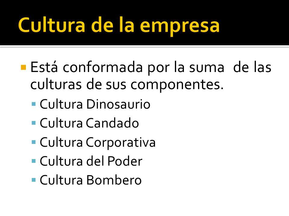Está conformada por la suma de las culturas de sus componentes. Cultura Dinosaurio Cultura Candado Cultura Corporativa Cultura del Poder Cultura Bombe