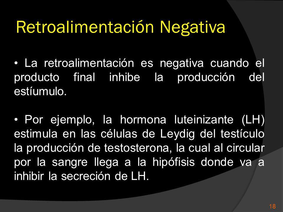 Retroalimentación Negativa 18 La retroalimentación es negativa cuando el producto final inhibe la producción del estíumulo. Por ejemplo, la hormona lu