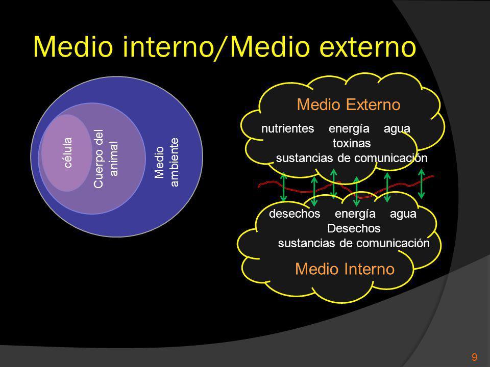 Medio interno/Medio externo célula Cuerpo del animal Medio ambiente Medio Externo Medio Interno nutrientes energía agua toxinas sustancias de comunicación desechos energía agua Desechos sustancias de comunicación 9