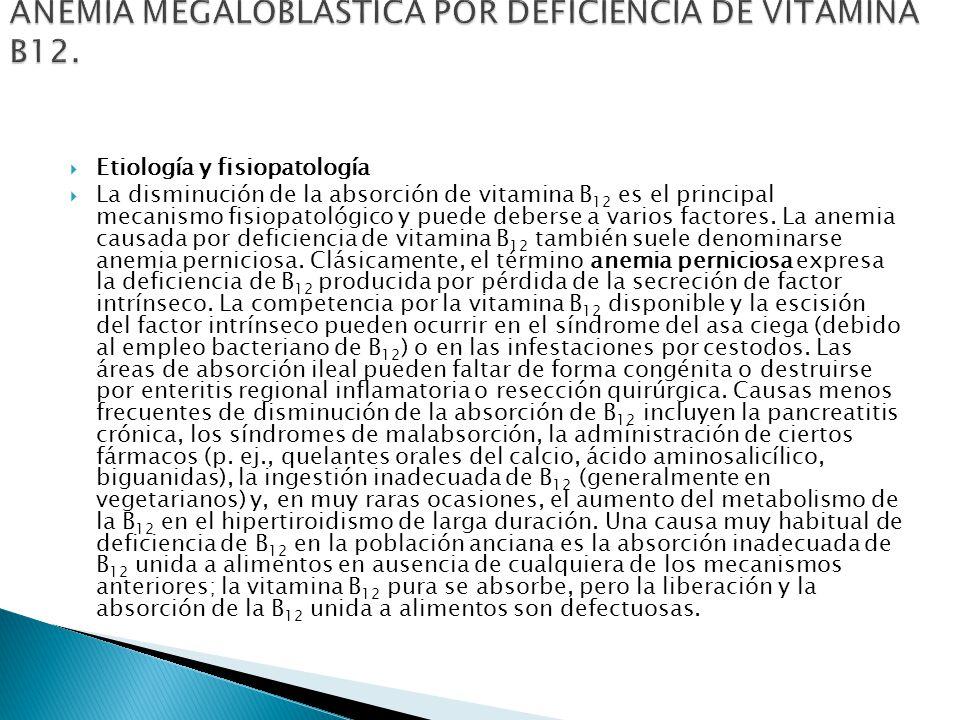 Etiología y fisiopatología La disminución de la absorción de vitamina B 12 es el principal mecanismo fisiopatológico y puede deberse a varios factores.
