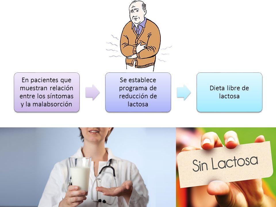 En pacientes que muestran relación entre los síntomas y la malabsorción Se establece programa de reducción de lactosa Dieta libre de lactosa
