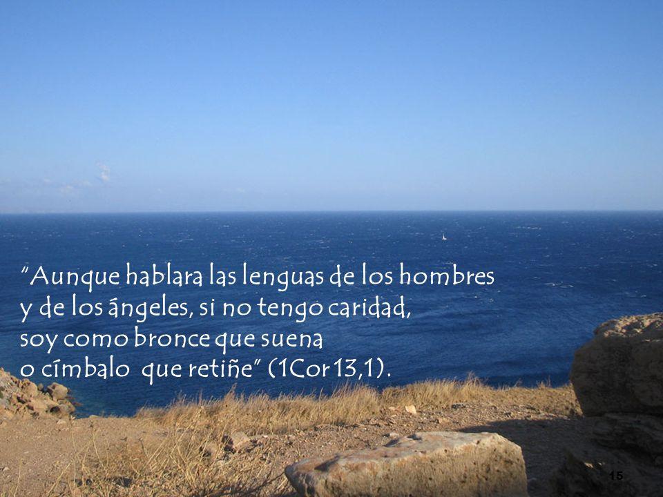 Aunque hablara las lenguas de los hombres y de los ángeles, si no tengo caridad, soy como bronce que suena o címbalo que retiñe (1Cor 13,1). 15
