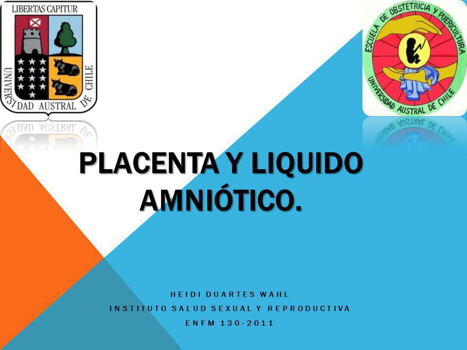 PLACENTA Y LIQUIDO AMNIÓTICO. HEIDI DUARTES WAHL INSTITUTO SALUD SEXUAL Y REPRODUCTIVA ENFM 130-2011