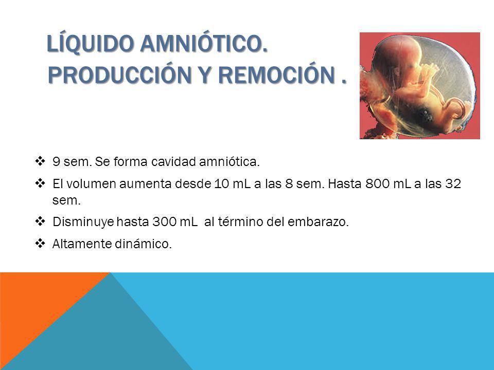 LÍQUIDO AMNIÓTICO. PRODUCCIÓN Y REMOCIÓN. 9 sem. Se forma cavidad amniótica. El volumen aumenta desde 10 mL a las 8 sem. Hasta 800 mL a las 32 sem. Di