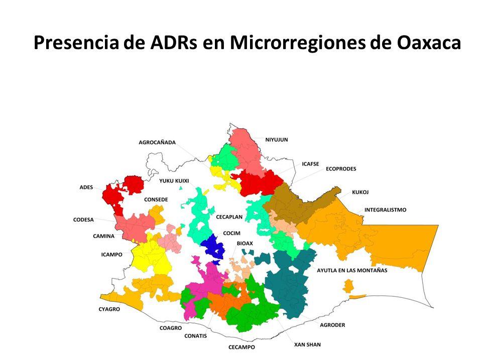 Presencia de ADRs en Microrregiones de Oaxaca La Red es: – Una Asociación civil de segundo nivel – Operando desde 2006 – 24 empresas socias (459 PSP´s