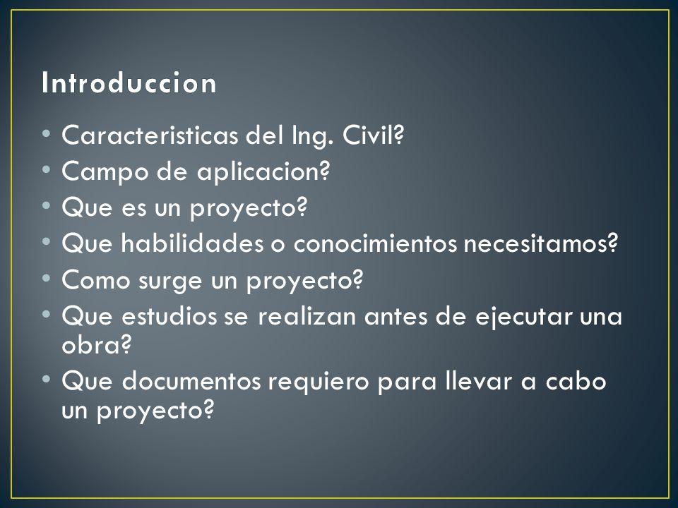 Caracteristicas del Ing.Civil. Campo de aplicacion.