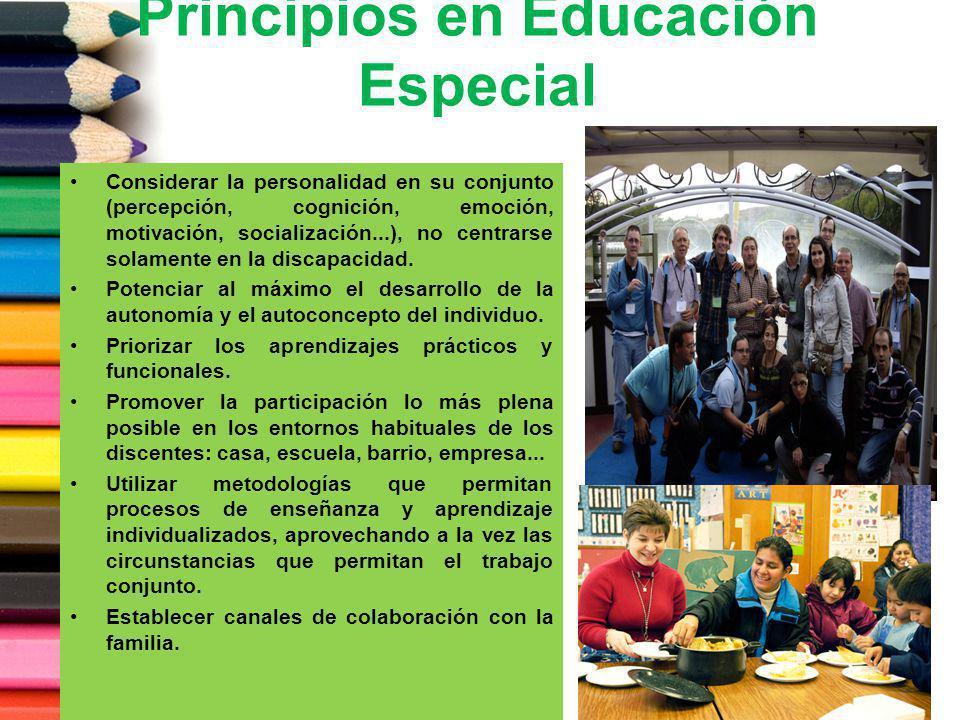 Principios en Educación Especial Considerar la personalidad en su conjunto (percepción, cognición, emoción, motivación, socialización...), no centrars