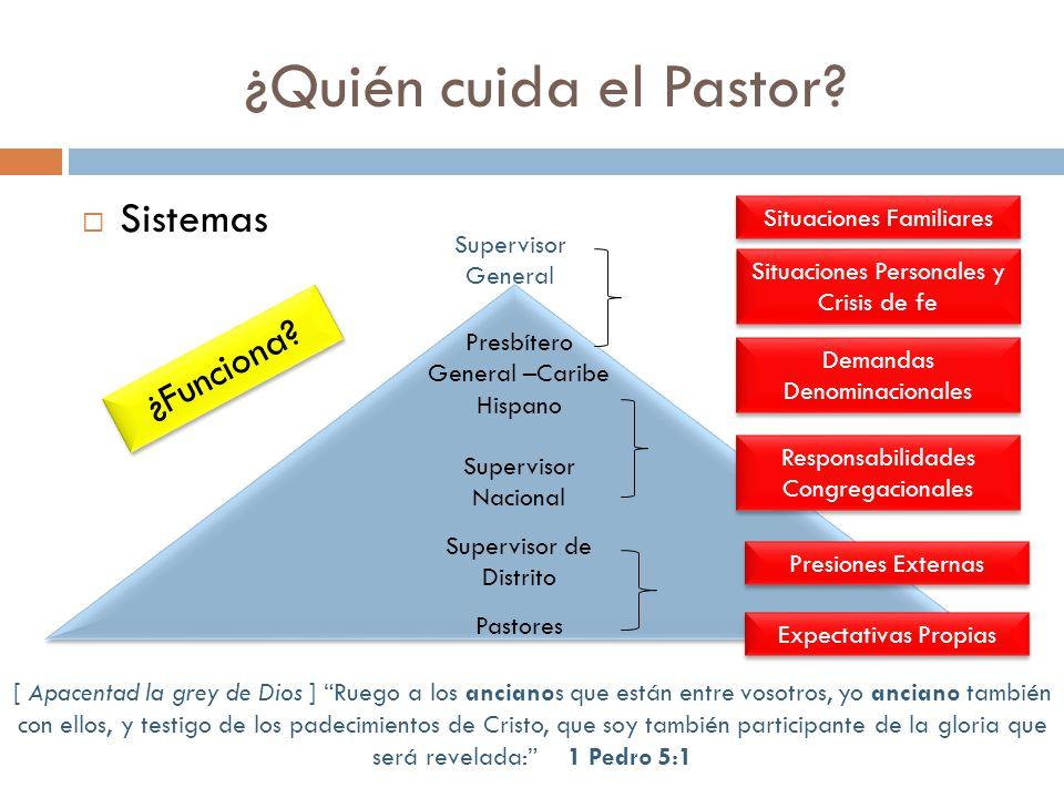 Sistemas ¿Quién cuida el Pastor.