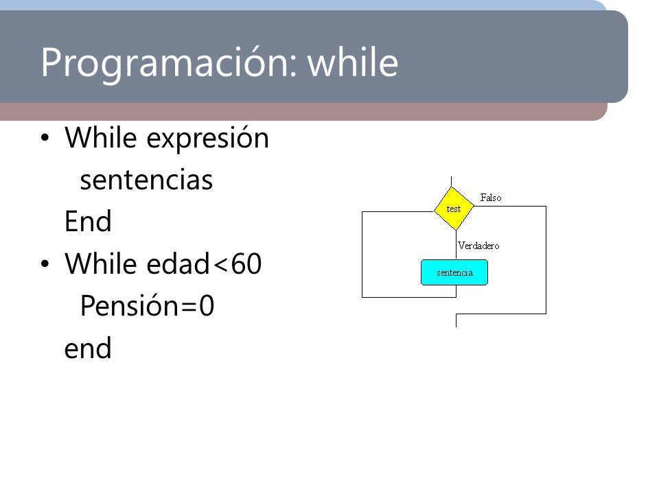 Programación: while While expresión sentencias End While edad<60 Pensión=0 end