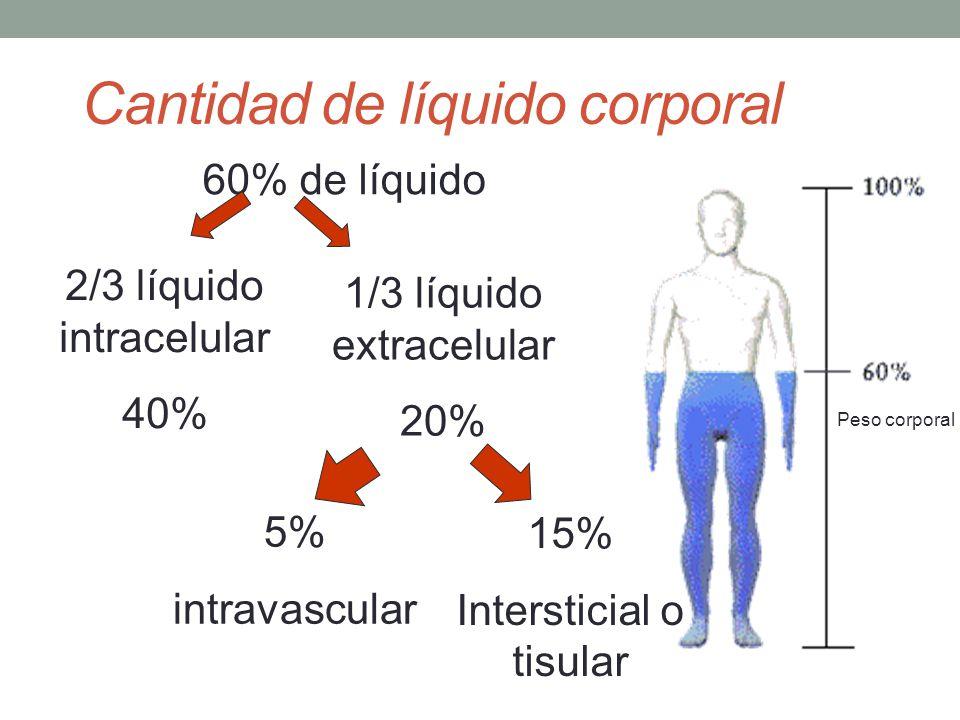 COMPARTIMIENTOS LÍQUIDOS DEL CUERPO AGUA CORPORAL TOTAL (40L) LÍQUIDO INTRACELULAR (LIC) (25L) LÍQUIDO EXTRACELULAR (LEC) (15L) PLASMA LÍQUIDO INTERSTICIAL