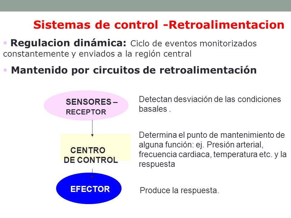 Tipos: Sistemas de retroalimentación positiva: Si la respuesta potencia (a favor, aumenta) el estímulo original.