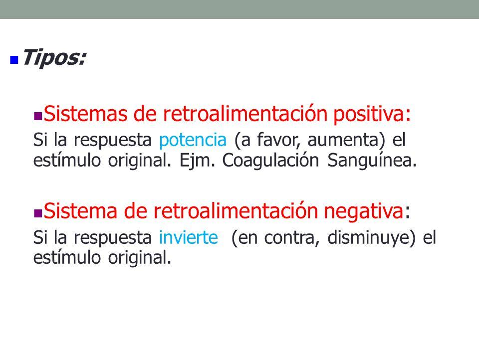 Retroalimentación Positiva Retroalimentación Negativa