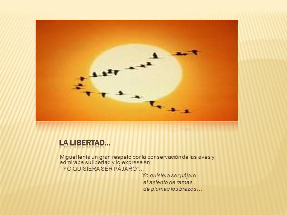 Miguel tenía un gran respeto por la conservación de las aves y admiraba su libertad y lo expresa en: YO QUISIERA SER PÁJARO… Yo quisiera ser pájaro el asiento de ramas de plumas los brazos…