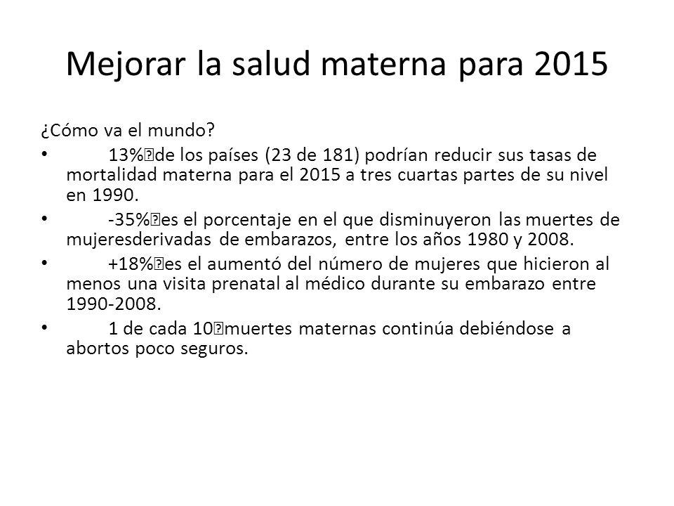 Mejorar la salud materna para 2015 ¿Cómo va el mundo.