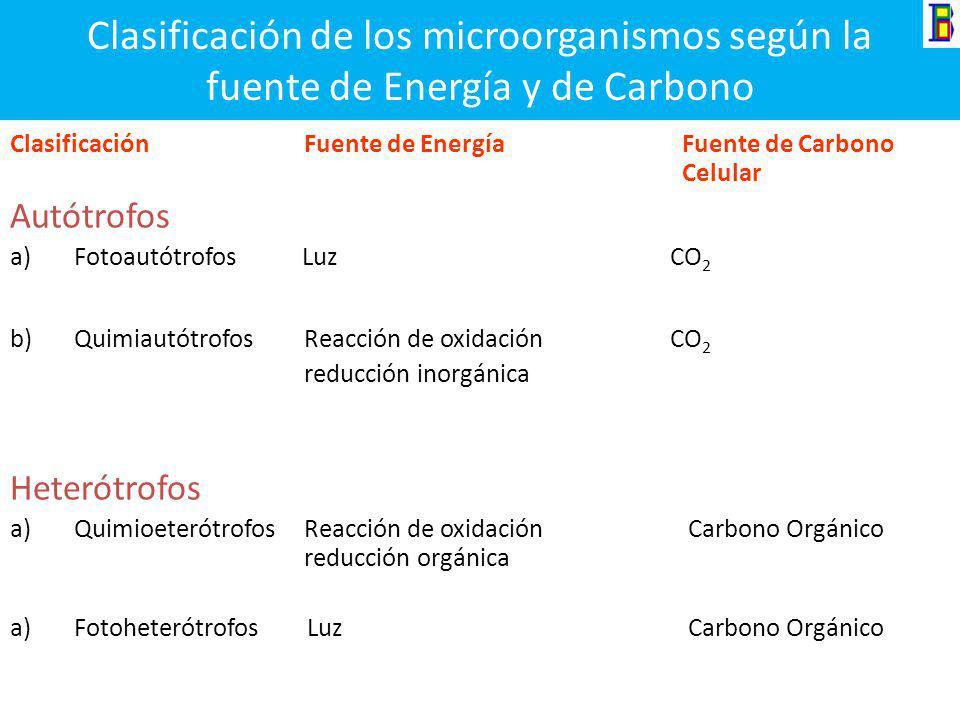 Fundamentos de Microbiología Para poder realizar sus funciones vitales los microorganismos necesitan: Una fuente de energía = Sol (fotosíntesis) y Rea
