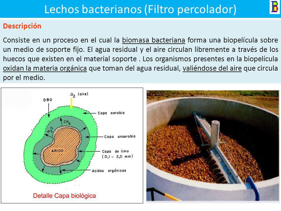 Componentes del filtro Anaerobio Tubería de Entrada Falso fondo Tubería de Limpieza Material filtrante Canales de recolección Tuberías de Ventilación.