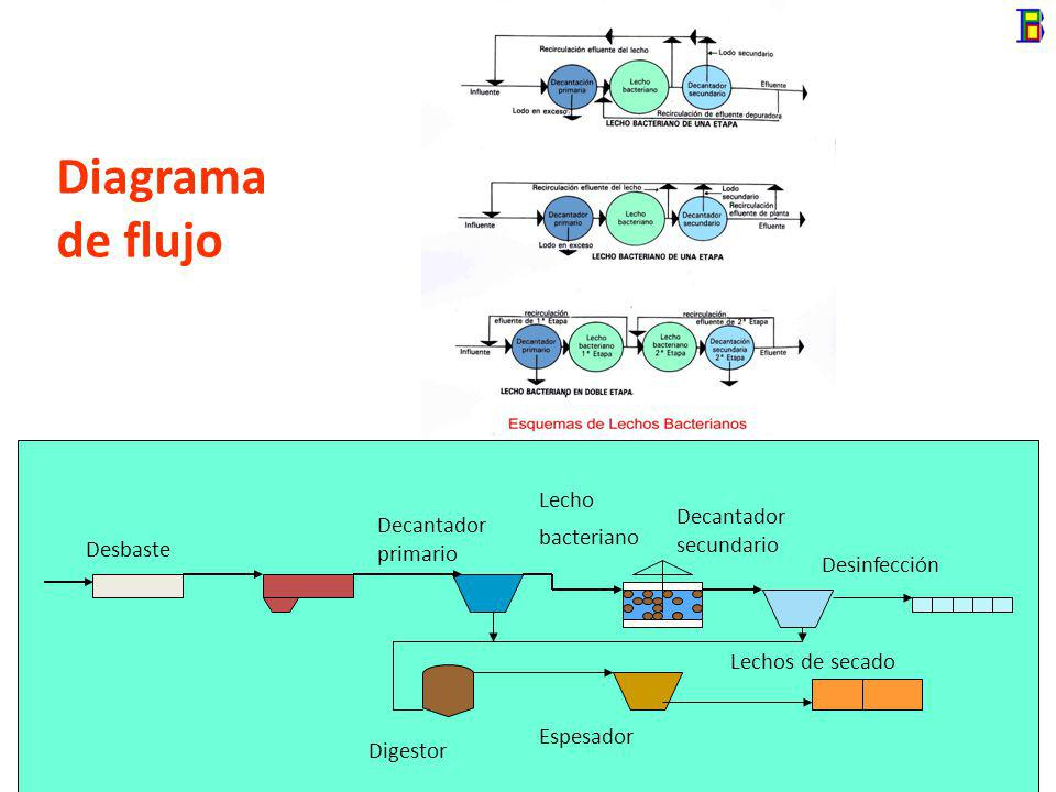 Descripción Consiste en un proceso en el cual la biomasa bacteriana forma una biopelícula sobre un medio de soporte fijo. El agua residual y el aire c