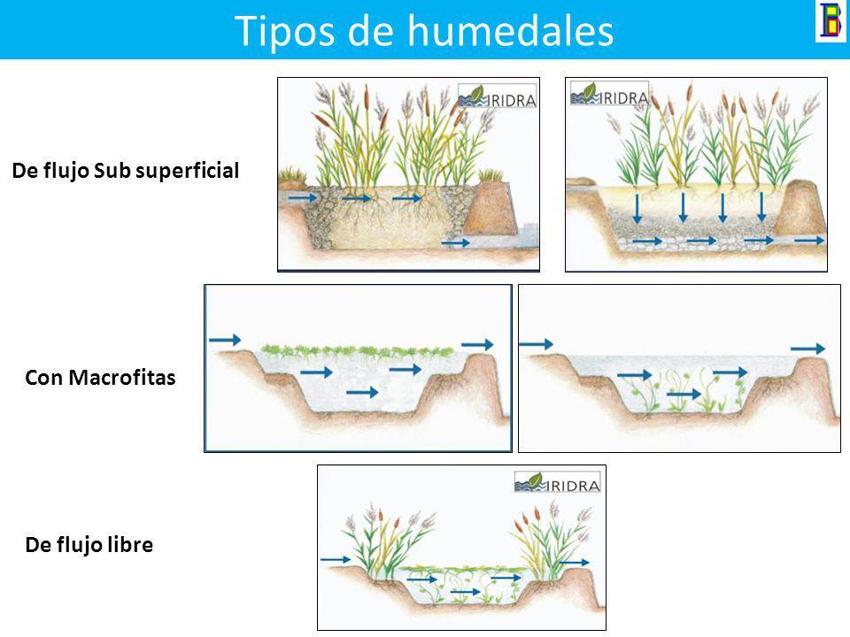 Humedales Ventajas Sencilla de construir y operar No es afectado por las variaciones climáticas No hay producción de malos olores Soporta la variacion