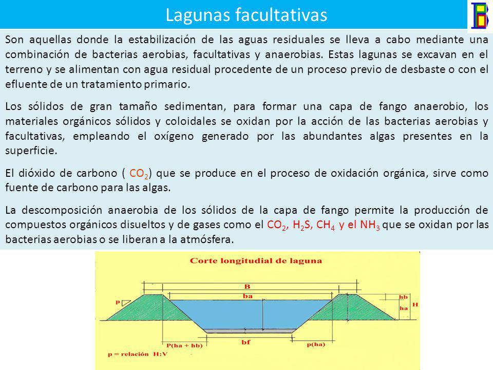 Lagunas Anaerobias Operan bajo una condición de ausencia de Aire u Oxígeno libre y se caracterizan por el empleo de una alta carga orgánica y por cons
