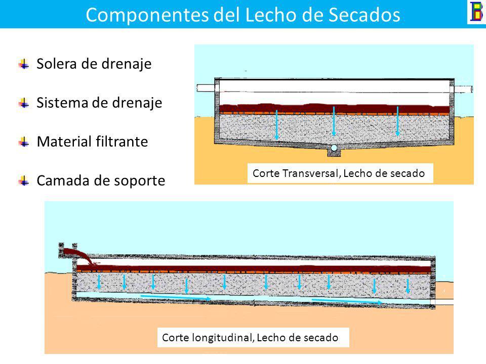 Lechos de Secado La deshidratación es una operación unitaria física (Mecánica) utilizada para reducir el contenido de humedad generalmente de los lodo
