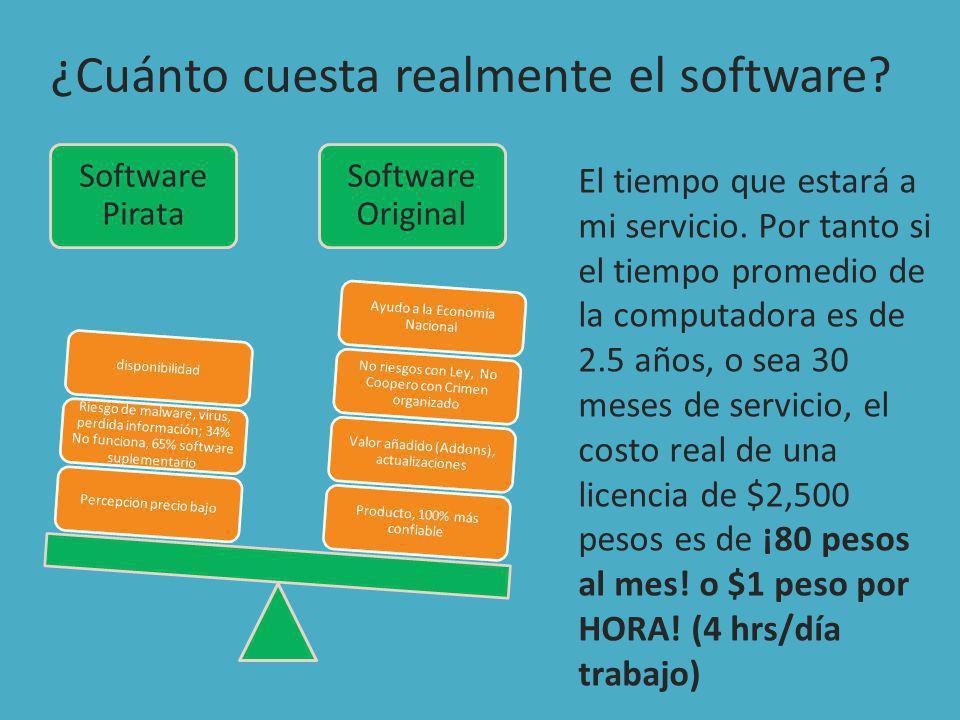 ¿Cuánto cuesta realmente el software.