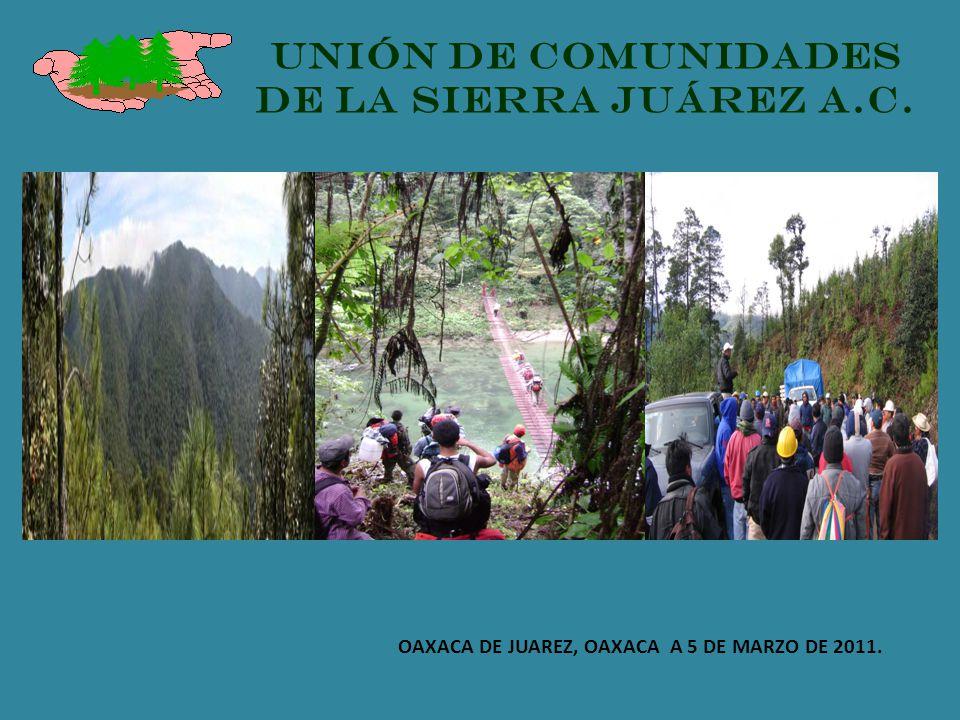 OAXACA DE JUAREZ, OAXACA A 5 DE MARZO DE 2011. UNIÓN DE COMUNIDADES DE LA SIERRA JUÁREZ A.C.