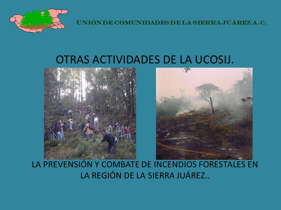 OTRAS ACTIVIDADES DE LA UCOSIJ. LA PREVENSIÓN Y COMBATE DE INCENDIOS FORESTALES EN LA REGIÓN DE LA SIERRA JUÁREZ.. UNIÓN DE COMUNIDADES DE LA SIERRA J