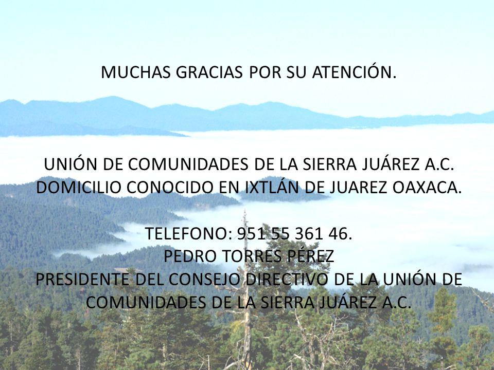 MUCHAS GRACIAS POR SU ATENCIÓN. UNIÓN DE COMUNIDADES DE LA SIERRA JUÁREZ A.C. DOMICILIO CONOCIDO EN IXTLÁN DE JUAREZ OAXACA. TELEFONO: 951 55 361 46.