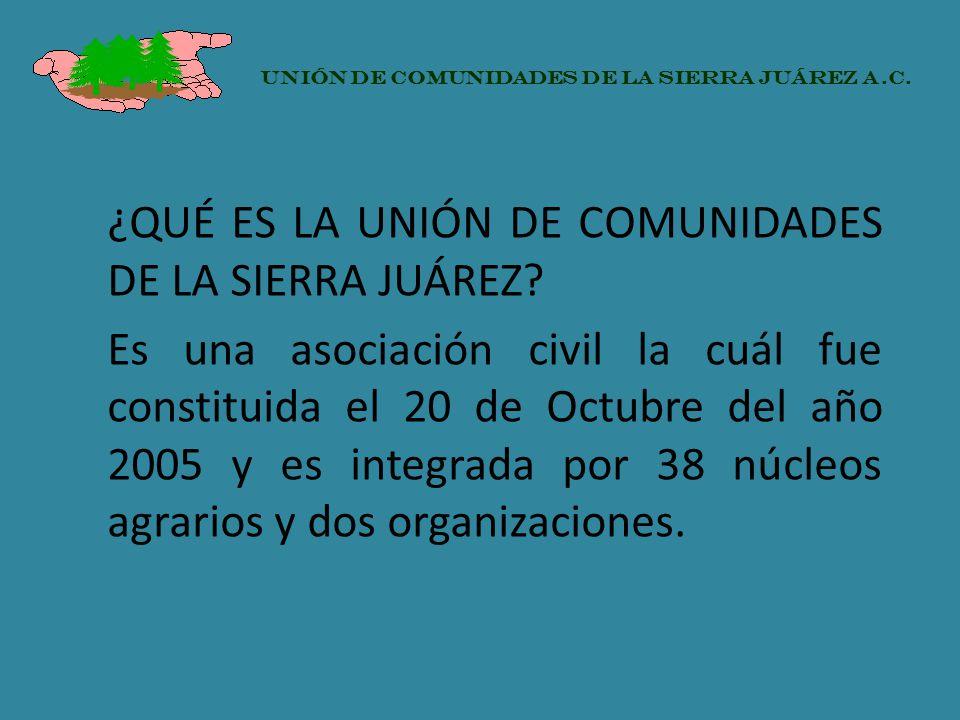 ¿QUÉ ES LA UNIÓN DE COMUNIDADES DE LA SIERRA JUÁREZ? Es una asociación civil la cuál fue constituida el 20 de Octubre del año 2005 y es integrada por