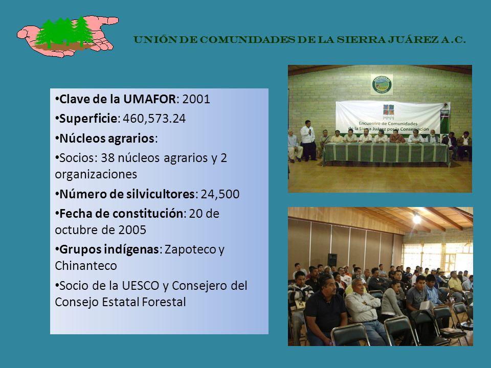 Clave de la UMAFOR: 2001 Superficie: 460,573.24 Núcleos agrarios: Socios: 38 núcleos agrarios y 2 organizaciones Número de silvicultores: 24,500 Fecha