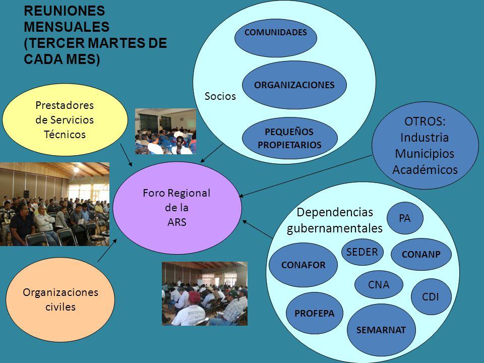 Foro Regional de la ARS Prestadores de Servicios Técnicos Organizaciones civiles CONAFOR CONANP SEMARNAT CDI PA CNA COMUNIDADES PEQUEÑOS PROPIETARIOS