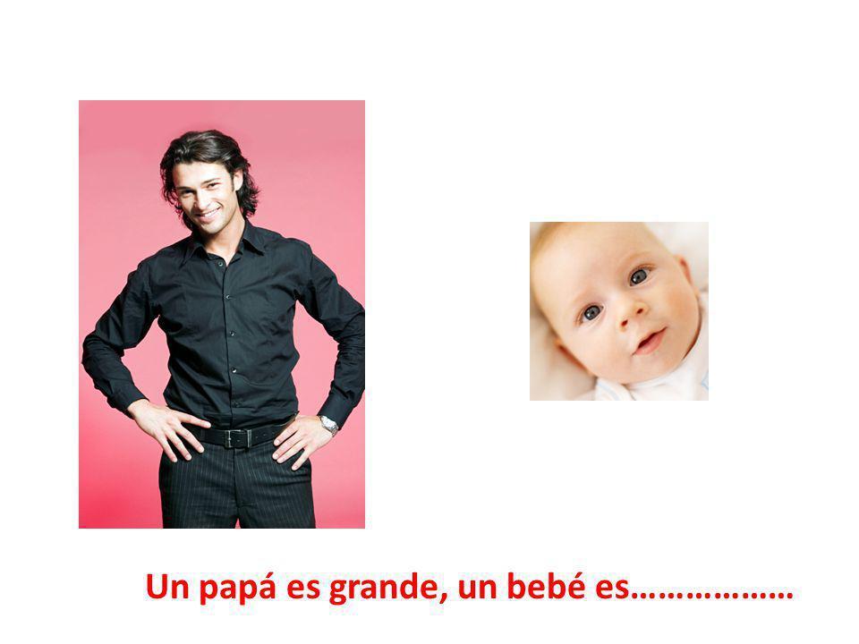 Un papá es grande, un bebé es………………