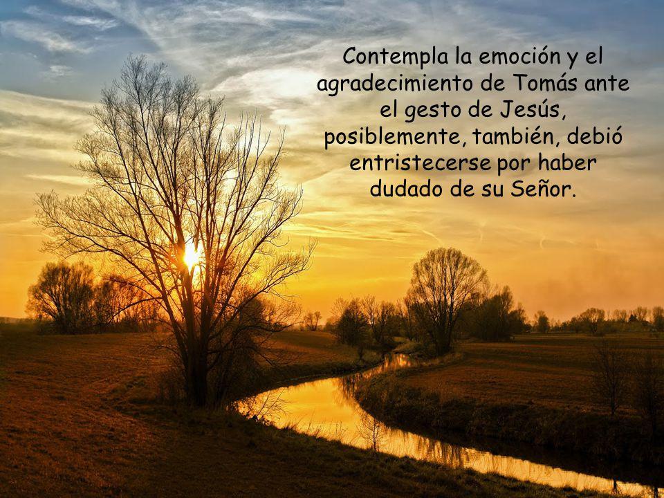 Agradece hoy de manera especial el don de la fe, la paz y el perdón.