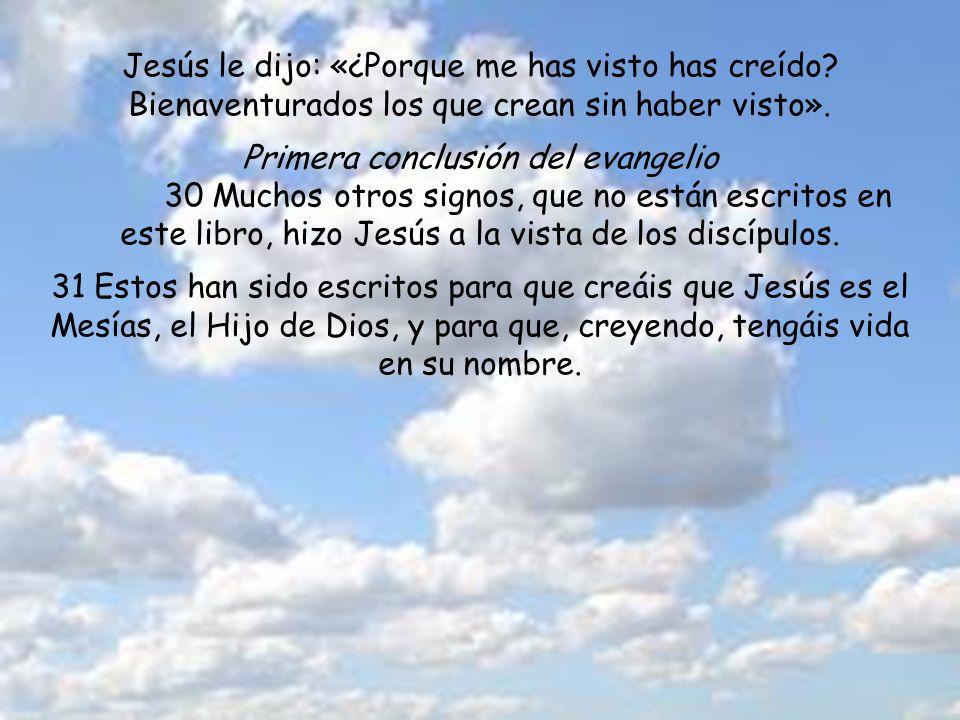 Jesús le dijo: «¿Porque me has visto has creído.Bienaventurados los que crean sin haber visto».