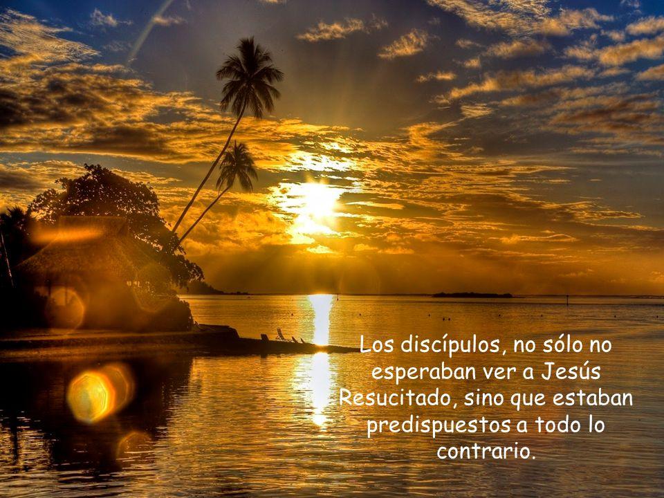 Los discípulos, no sólo no esperaban ver a Jesús Resucitado, sino que estaban predispuestos a todo lo contrario.