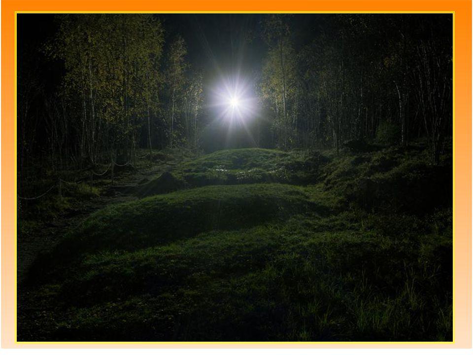 A vosotros, cuando la aurora nace en vuestras vidas y en la mía se tiende la oscuridad. A vosotros.