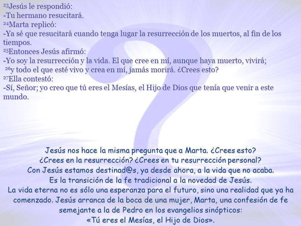 www.vitanoblepowerpoints.net 17 A su llegada, Jesús se encontró con que hacía ya cuatro días que Lázaro había sido sepultado.