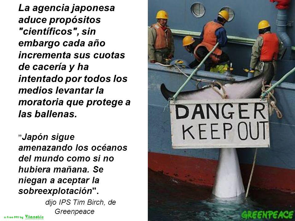 A bordo de ocho lanchas, la tripulación de los barcos de Greenpeace intentó por diversos medios no violentos suspender la cacería de los cetáceos. a F