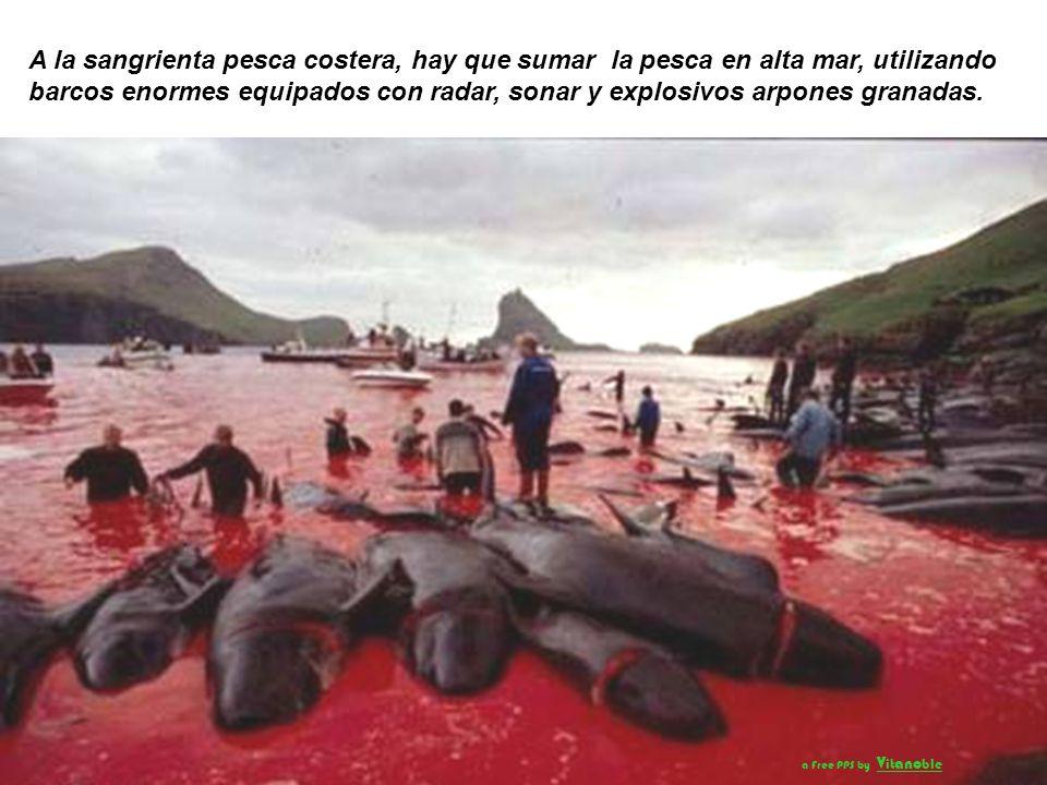 Los métodos utilizados actualmente son tan buenos o mejores que aquellos utilizados en otras formas de caza mayor, tanto al tiempo que el cetáceo tard