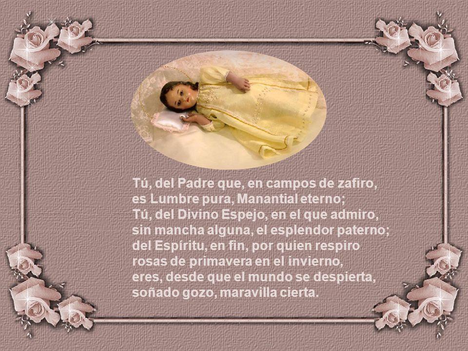 Tú, del Padre que, en campos de zafiro, es Lumbre pura, Manantial eterno; Tú, del Divino Espejo, en el que admiro, sin mancha alguna, el esplendor paterno; del Espíritu, en fin, por quien respiro rosas de primavera en el invierno, eres, desde que el mundo se despierta, soñado gozo, maravilla cierta.