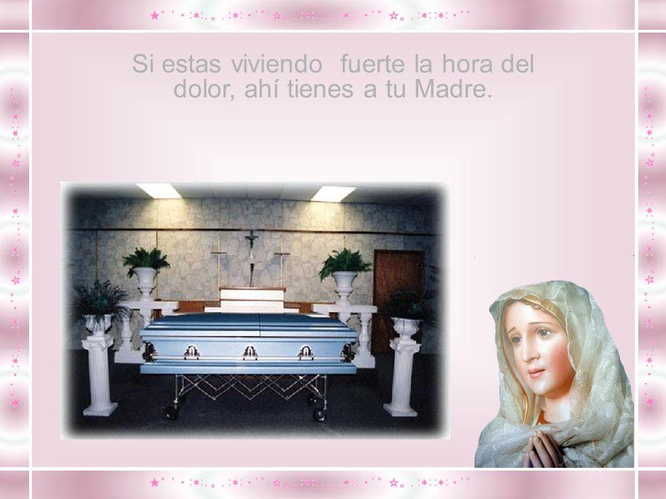 Ahí tienes a tu Madre.Responded a mi pedido: Rezad el Santo Rosario.