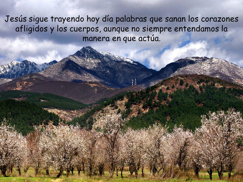 El Señor es mi luz y mi salvación, ¿a quién temeré? El Señor es la defensa de mi vida, ¿quién me hará temblar? Una cosa pido al Señor, eso buscaré: ha