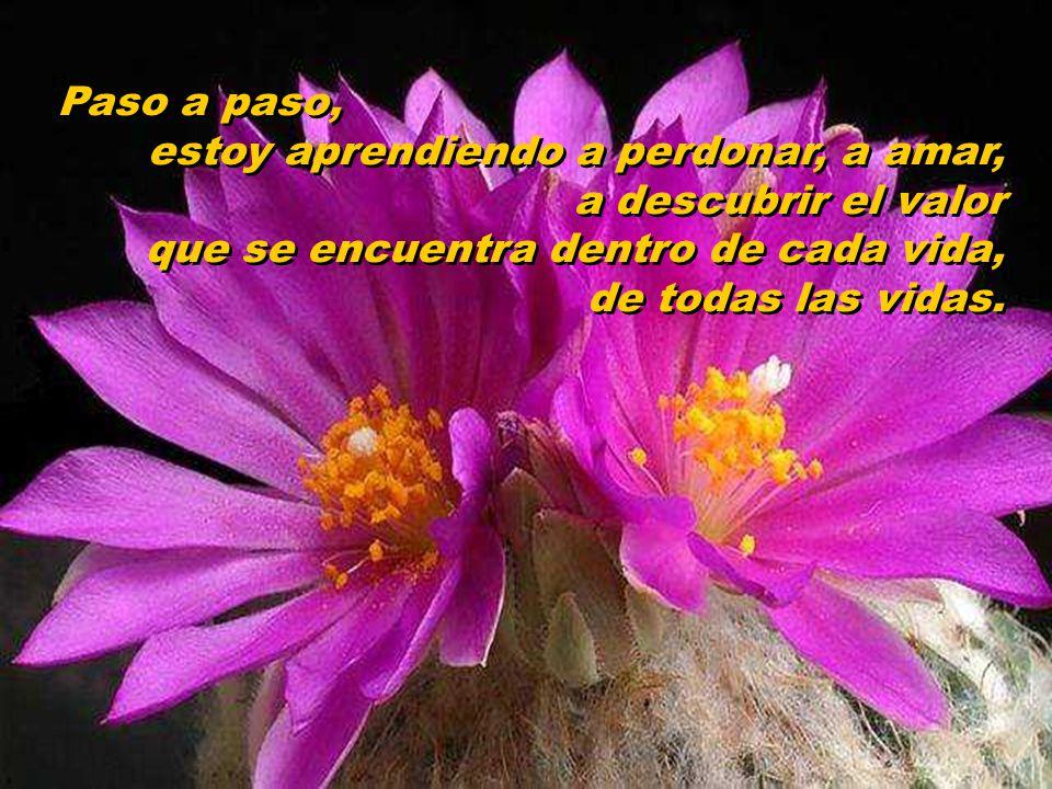 El amor perdona, olvida, extingue todos los trazos de dolor en el corazón. El amor perdona, olvida, extingue todos los trazos de dolor en el corazón.